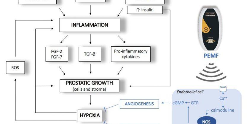 Typ 1 Diabetes und ketogene Ernährung